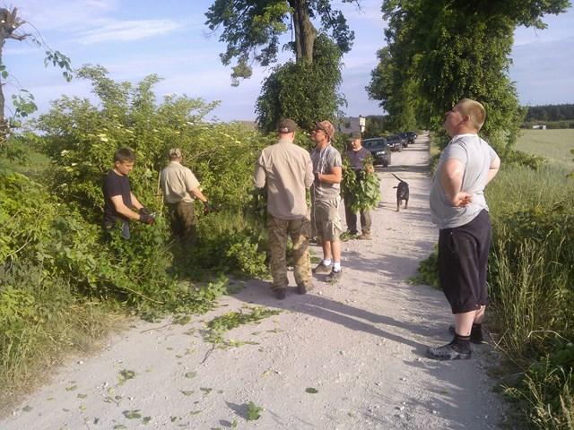 KL Daniel w Lesnie - Lisciarka 2015-06 03