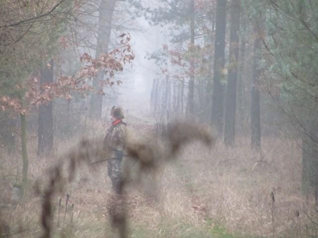 KL Daniel w Lesnie - Polowania zbiorowe 2014 11