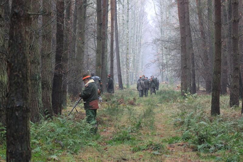 KL Daniel w Lesnie - Polowanie Hubertowskie 2013 12
