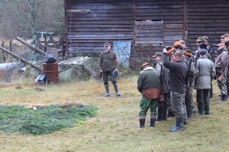 KL Daniel w Lesnie - Polowanie Hubertowskie 2013 22