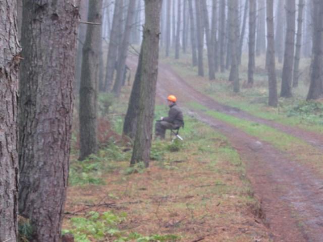 KL Daniel w Lesnie - Polowanie Hubertowskie 2014 07