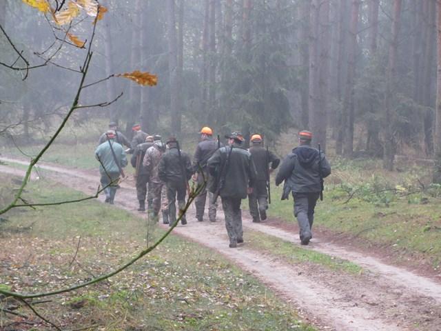 KL Daniel w Lesnie - Polowanie Hubertowskie 2014 10