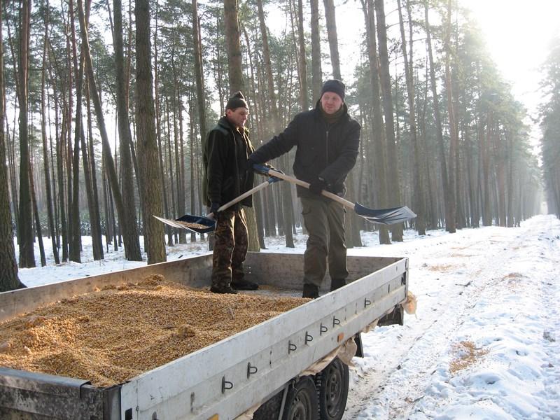 KL Daniel w Lesnie - Praca w lowisku 2014-01-25 07