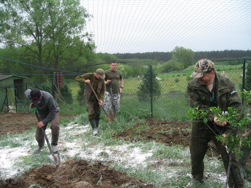 KL Daniel w Lesnie - Praca w wolierze 2013-05 09