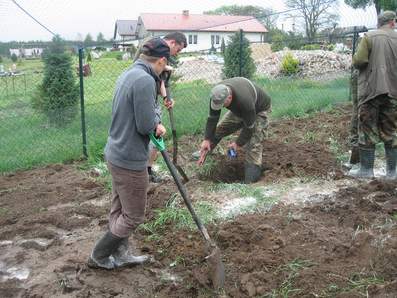 KL Daniel w Lesnie - Praca w wolierze 2013-05 14