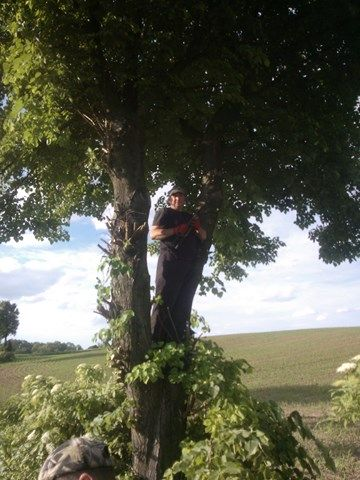 KL Daniel w Lesnie - Lisciarka 2015-06 01