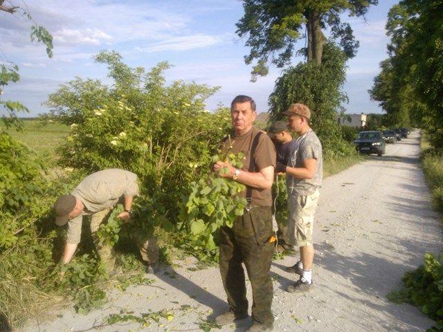KL Daniel w Lesnie - Lisciarka 2015-06 06