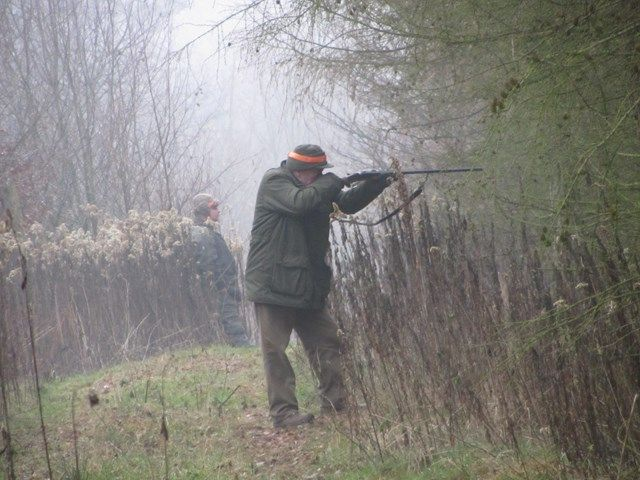 KL Daniel w Lesnie - Polowania zbiorowe 2014 10