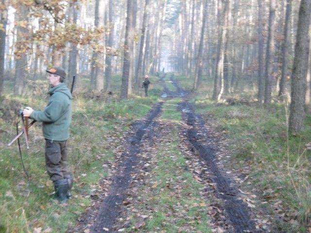 KL Daniel w Lesnie - Polowanie hubertowskie 2017-11 07