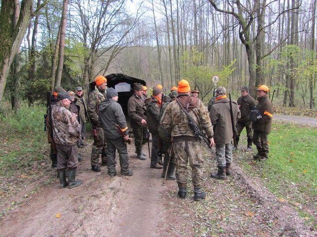 KL Daniel w Lesnie - Polowanie zbiorowe 2017-11 10
