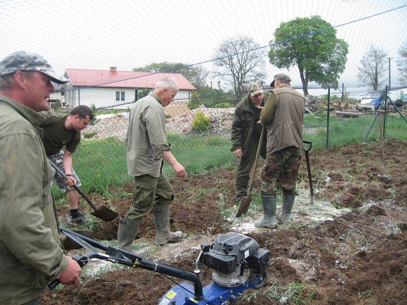 KL Daniel w Lesnie - Praca w wolierze 2013-05 13